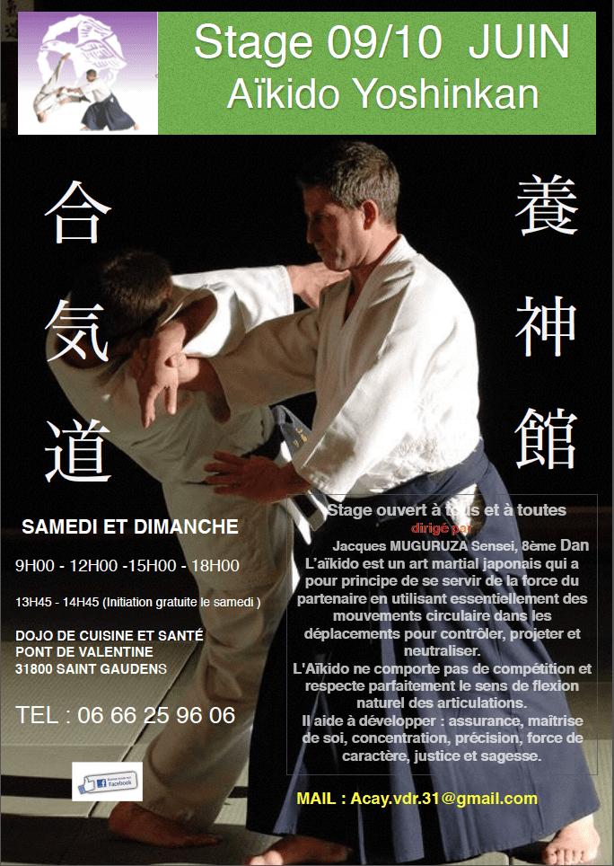 club aikido saint gaudens